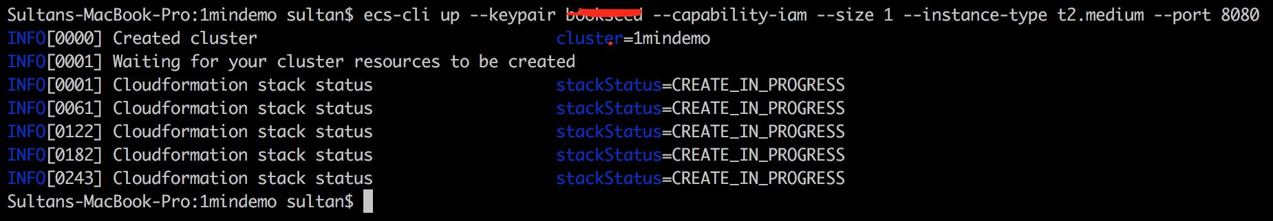 start_cluster